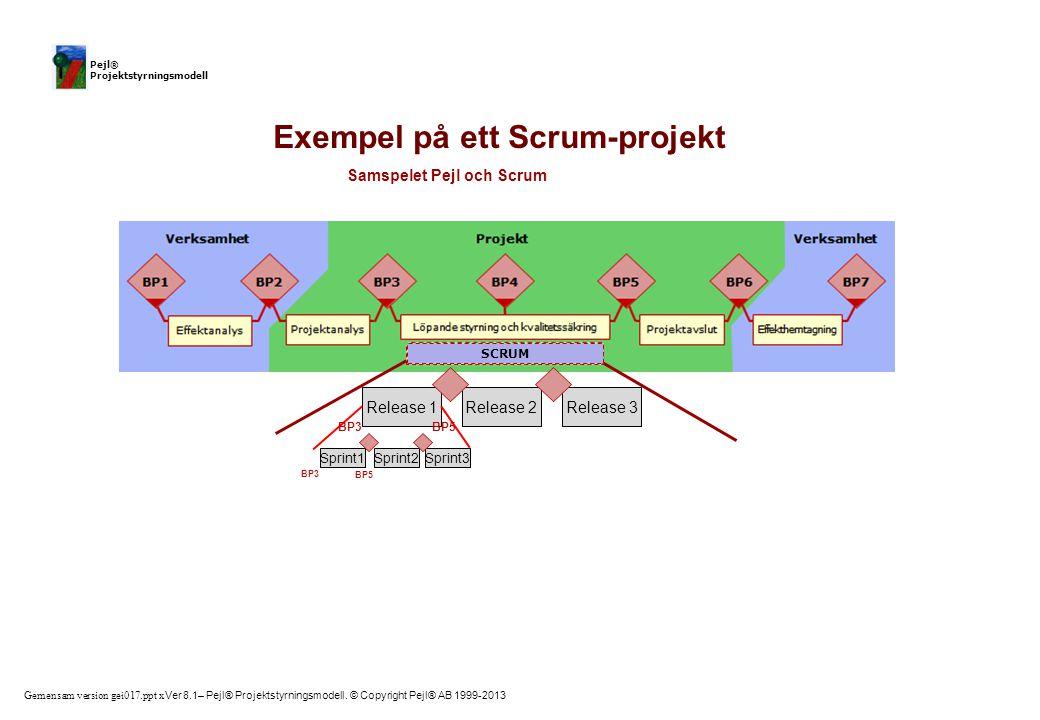Gemensam version gei017.ppt x Ver 8.1– Pejl® Projektstyrningsmodell. © Copyright Pejl® AB 1999-2013 Pejl® Projektstyrningsmodell Release 1 Sprint1 Exe