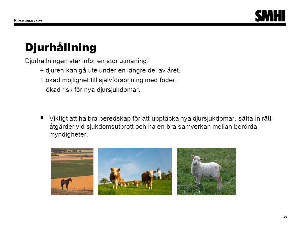 Djurhållning Djurhållningen står inför en stor utmaning: + djuren kan gå ute under en längre del av året. + ökad möjlighet till självförsörjning med f