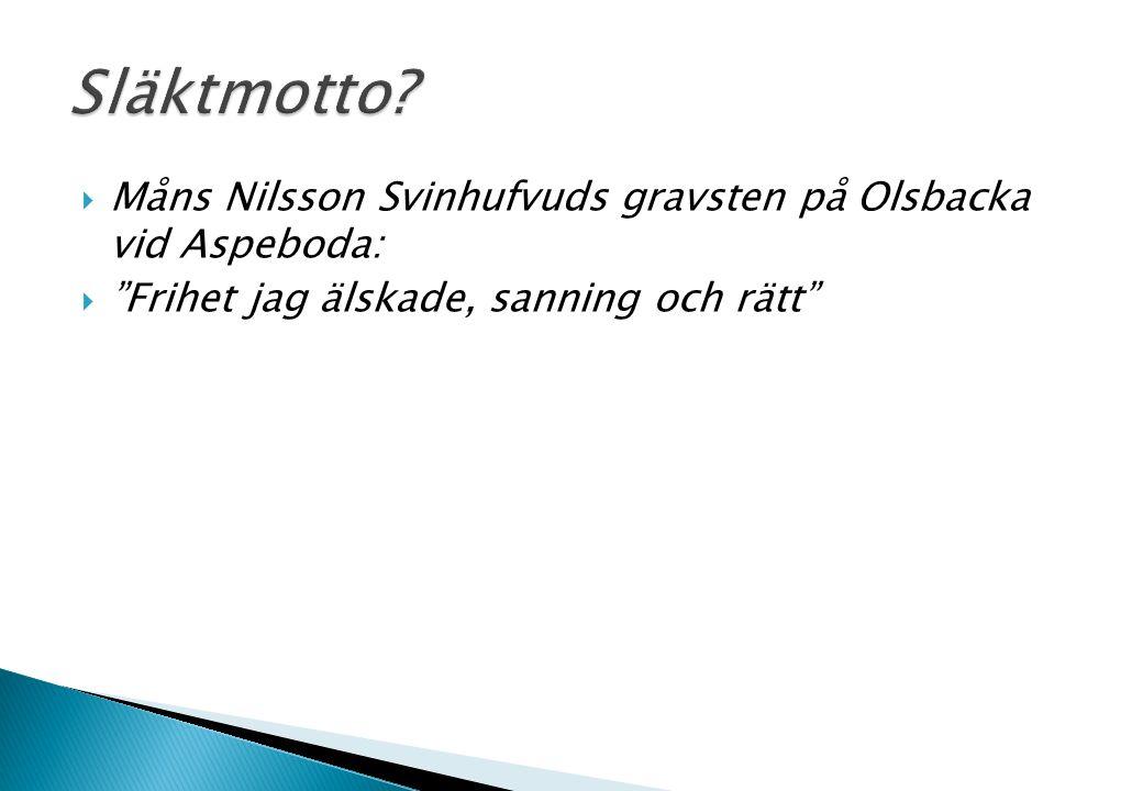 """ Måns Nilsson Svinhufvuds gravsten på Olsbacka vid Aspeboda:  """"Frihet jag älskade, sanning och rätt"""""""