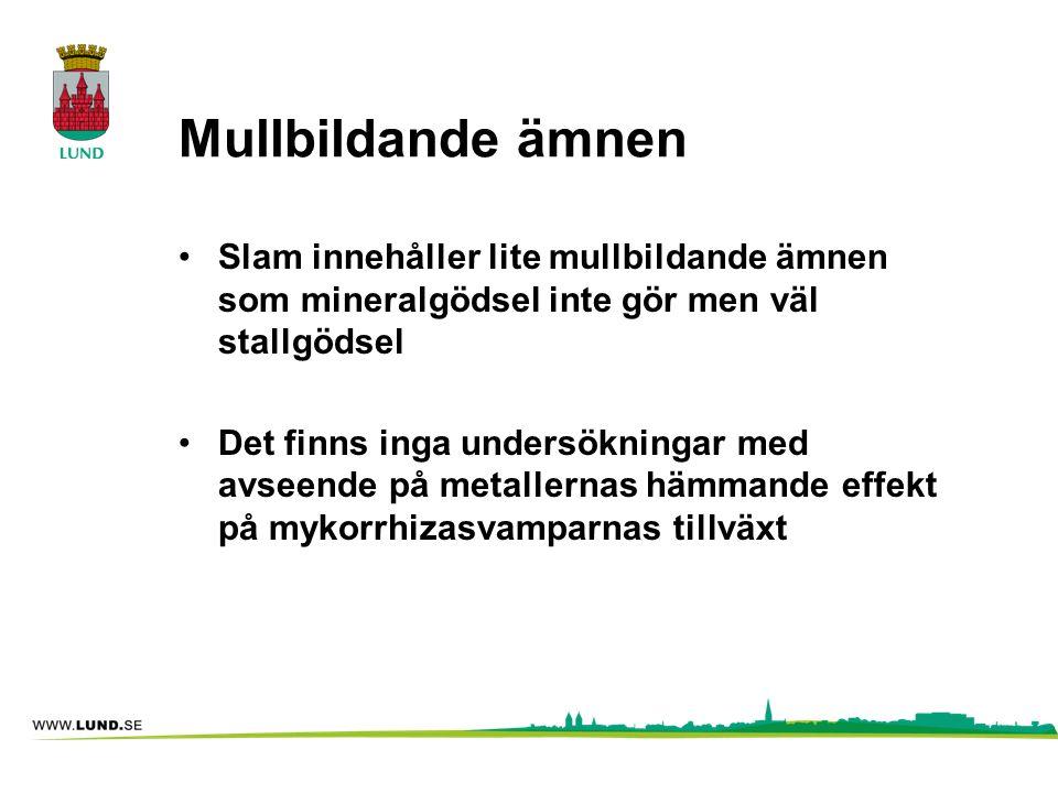 Mullbildande ämnen •Slam innehåller lite mullbildande ämnen som mineralgödsel inte gör men väl stallgödsel •Det finns inga undersökningar med avseende