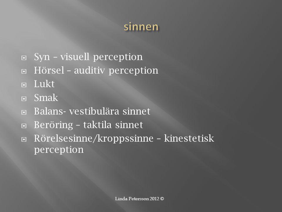  Syn – visuell perception  Hörsel – auditiv perception  Lukt  Smak  Balans- vestibulära sinnet  Beröring – taktila sinnet  Rörelsesinne/kroppss