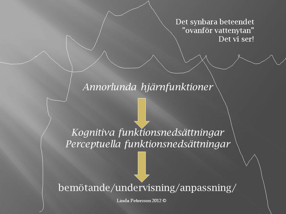 Annorlunda hjärnfunktioner Kognitiva funktionsnedsättningar Perceptuella funktionsnedsättningar bemötande/undervisning/anpassning/ Det synbara beteend