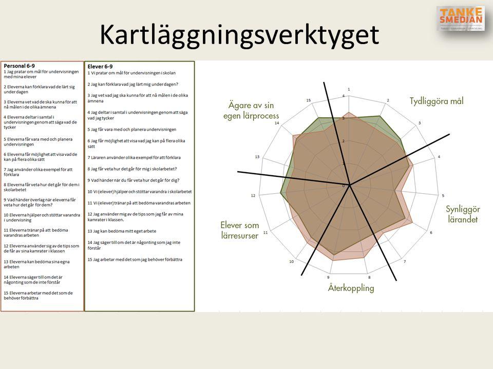 Kartläggningsverktyget Redovisning AnvändarvänligtSka vara diskussionsfrämjande Tydlig koppling mellan frågor och strategier Tydliggöra likheter/skill