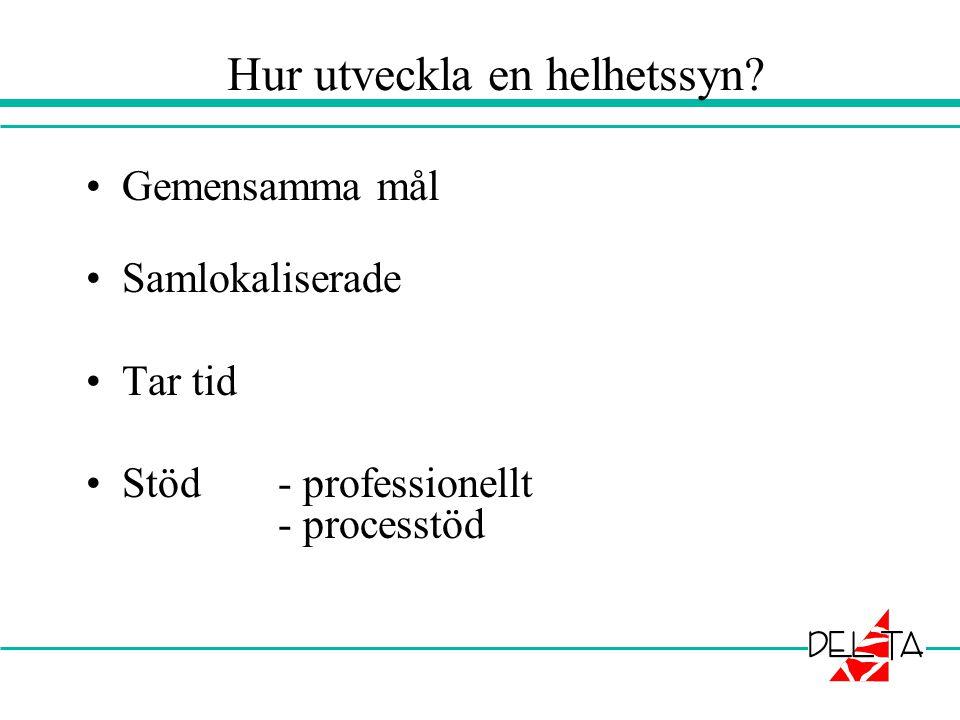Hur utveckla en helhetssyn? •Gemensamma mål •Samlokaliserade •Tar tid •Stöd - professionellt - processtöd