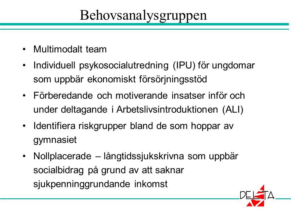 Behovsanalysgruppen •Multimodalt team •Individuell psykosocialutredning (IPU) för ungdomar som uppbär ekonomiskt försörjningsstöd •Förberedande och mo