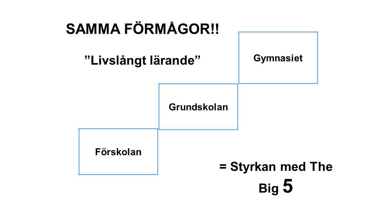 """Förskolan Grundskolan Gymnasiet SAMMA FÖRMÅGOR!! """"Livslångt lärande"""" = Styrkan med The Big 5"""