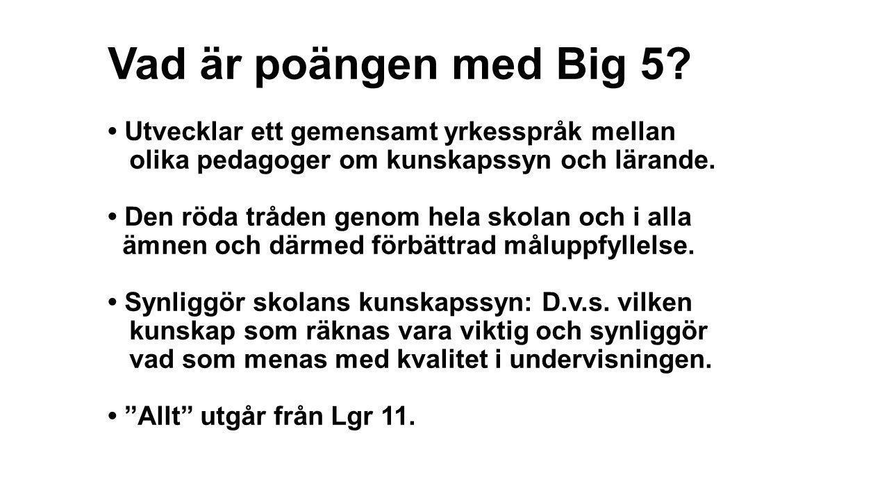 Vad är poängen med Big 5? • Utvecklar ett gemensamt yrkesspråk mellan olika pedagoger om kunskapssyn och lärande. • Den röda tråden genom hela skolan