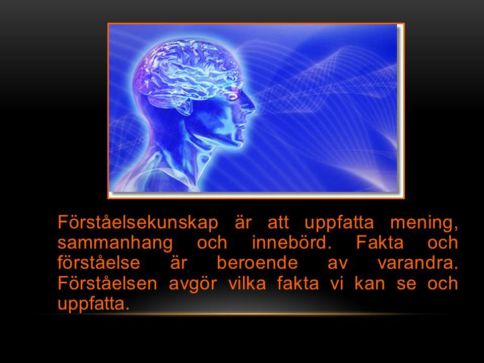 Förståelsekunskap är att uppfatta mening, sammanhang och innebörd.
