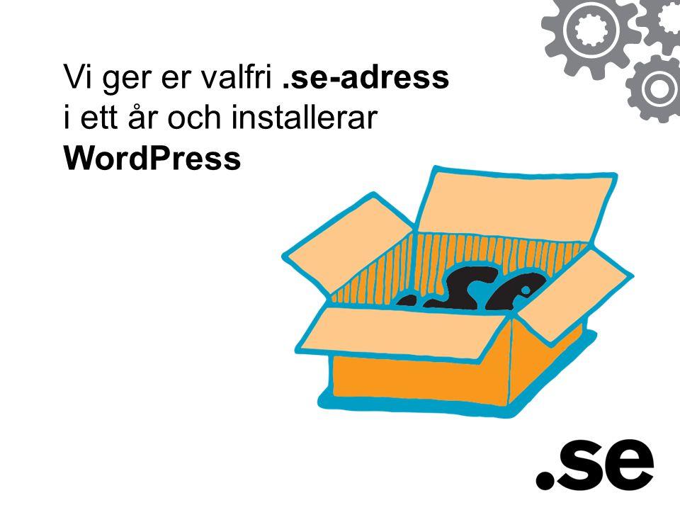 Vi ger er valfri.se-adress i ett år och installerar WordPress