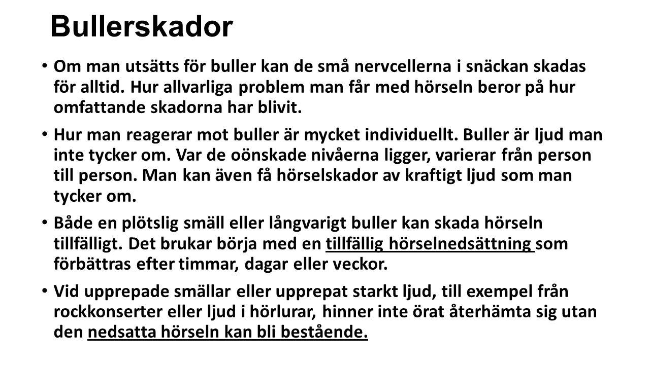 Bullerskador • Om man utsätts för buller kan de små nervcellerna i snäckan skadas för alltid. Hur allvarliga problem man får med hörseln beror på hur