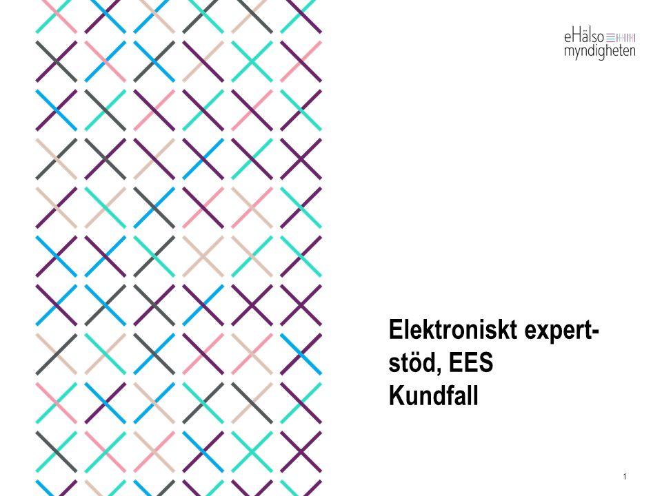 Elektroniskt expert- stöd, EES Kundfall 1
