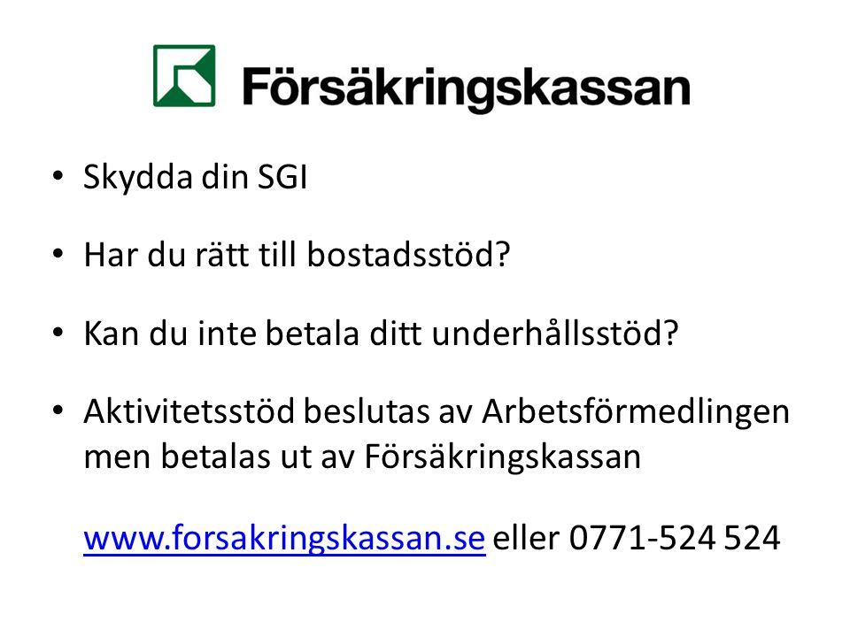 Centrala studiestödsnämnden Svårt att betala.
