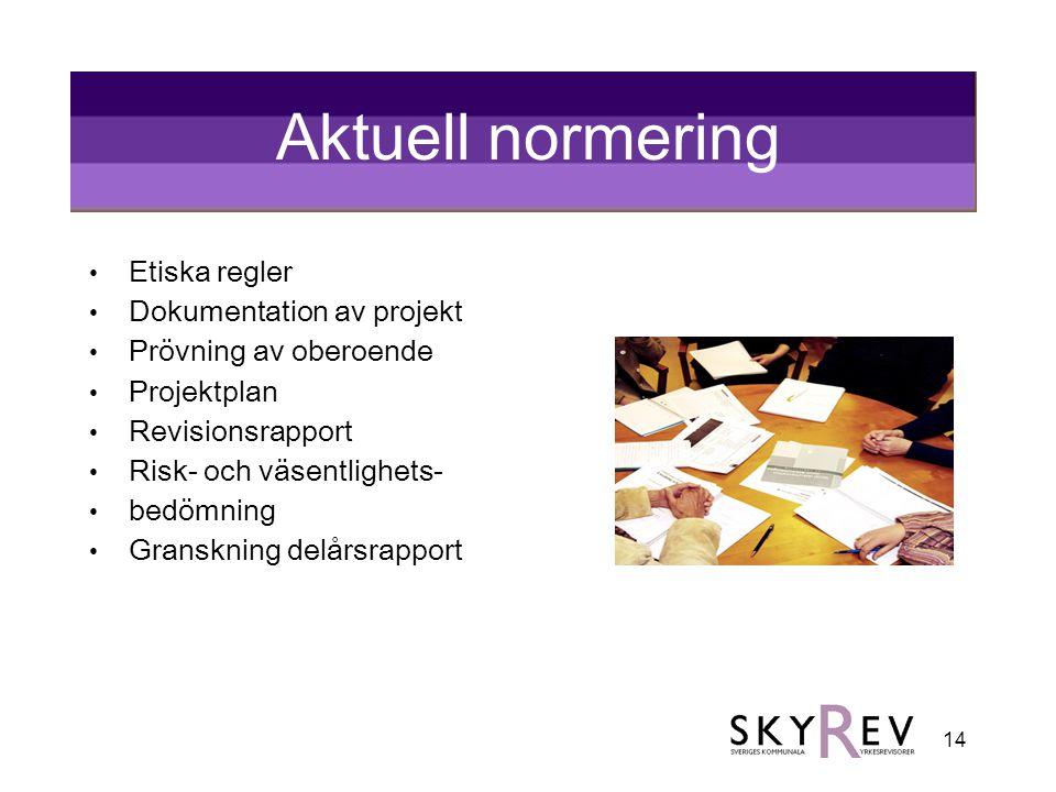 14 Aktuell normering • Etiska regler • Dokumentation av projekt • Prövning av oberoende • Projektplan • Revisionsrapport • Risk- och väsentlighets- •