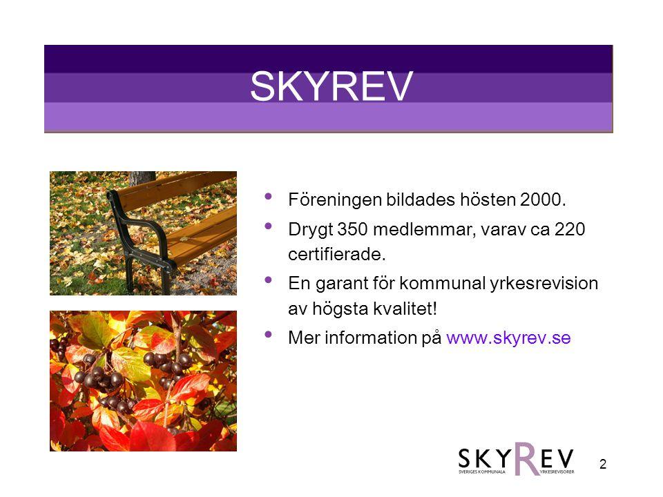 2 SKYREV • Föreningen bildades hösten 2000. • Drygt 350 medlemmar, varav ca 220 certifierade. • En garant för kommunal yrkesrevision av högsta kvalite