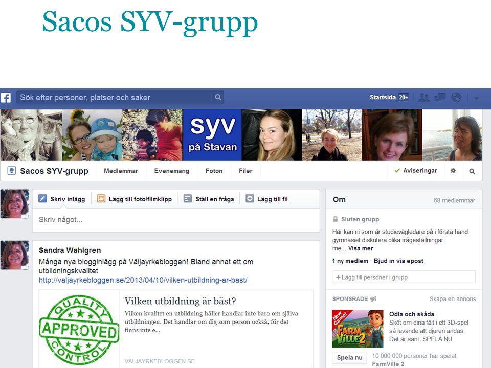 Sacos SYV-grupp 13