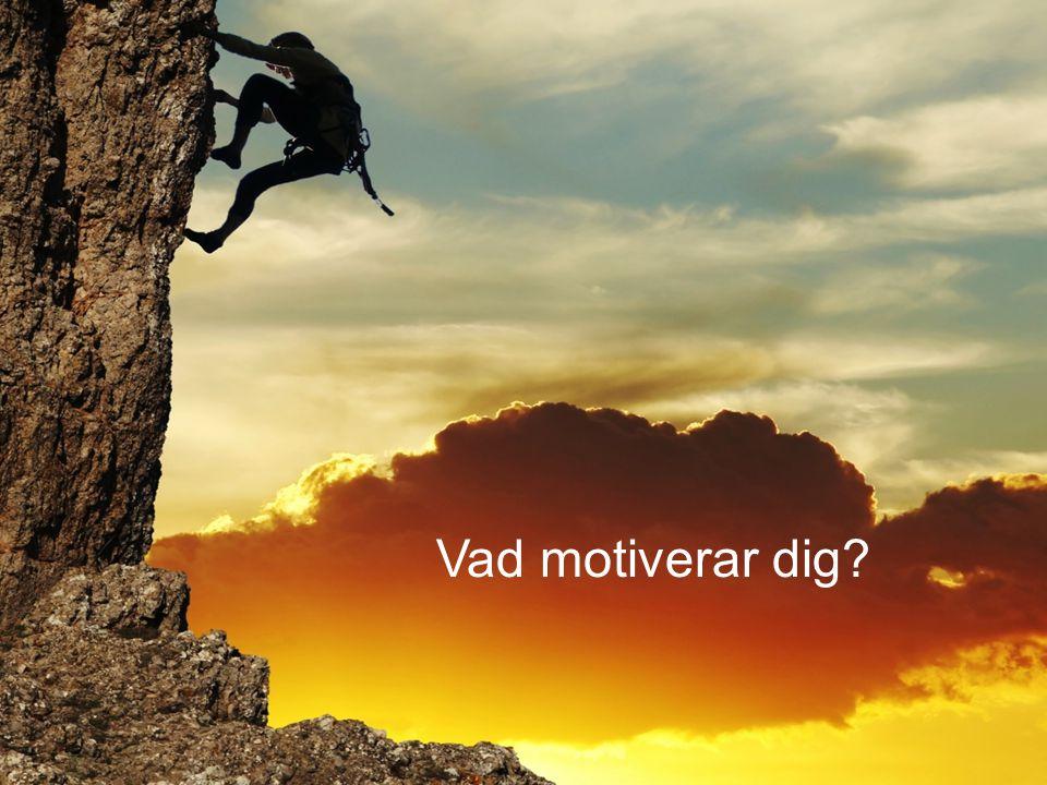 www.gu.se Vad motiverar dig?