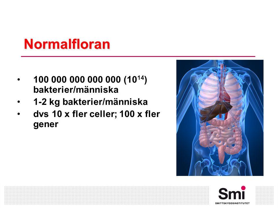 Normalfloran •100 000 000 000 000 (10 14 ) bakterier/människa •1-2 kg bakterier/människa •dvs 10 x fler celler; 100 x fler gener