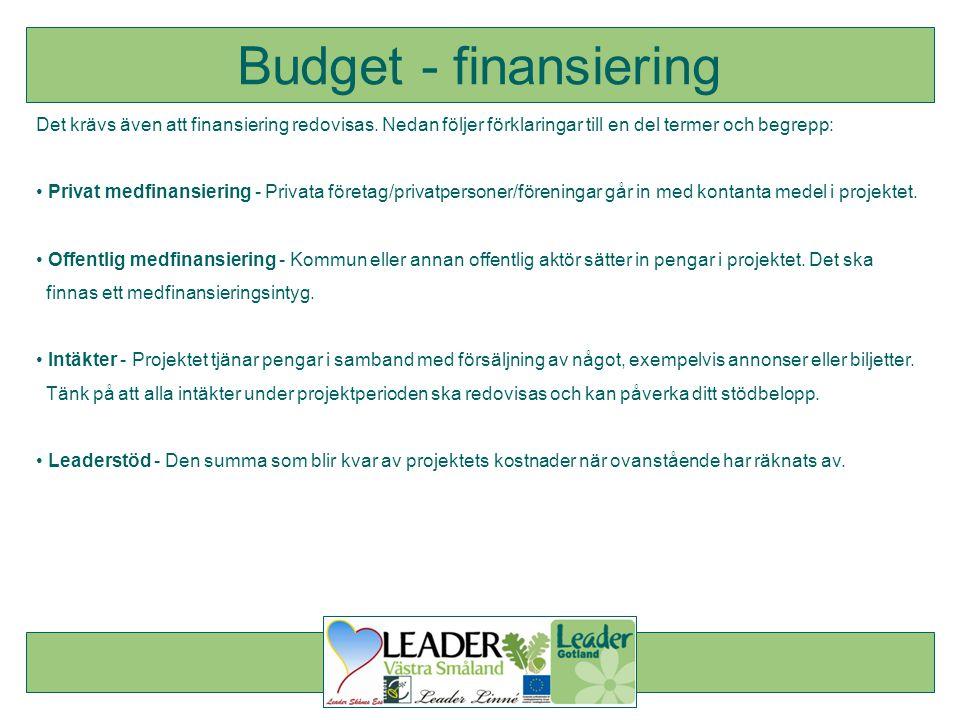 Det krävs även att finansiering redovisas. Nedan följer förklaringar till en del termer och begrepp: • Privat medfinansiering - Privata företag/privat