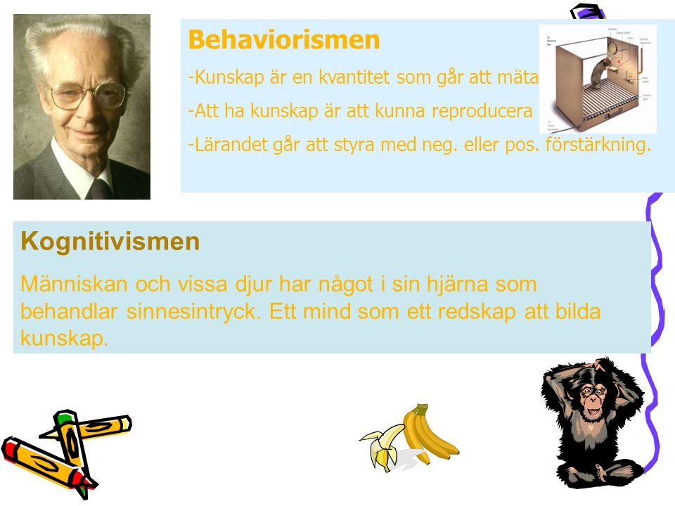 Behaviorismen -Kunskap är en kvantitet som går att mäta -Att ha kunskap är att kunna reproducera -Lärandet går att styra med neg.