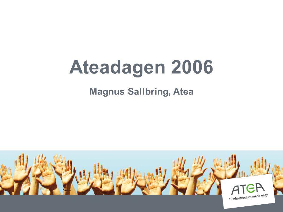 Ateadagen 2006 Magnus Sallbring, Atea