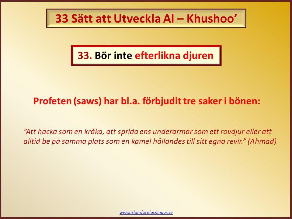 """www.islamforelasningar.se """"Att hacka som en kråka, att sprida ens underarmar som ett rovdjur eller att alltid be på samma plats som en kamel hållandes"""