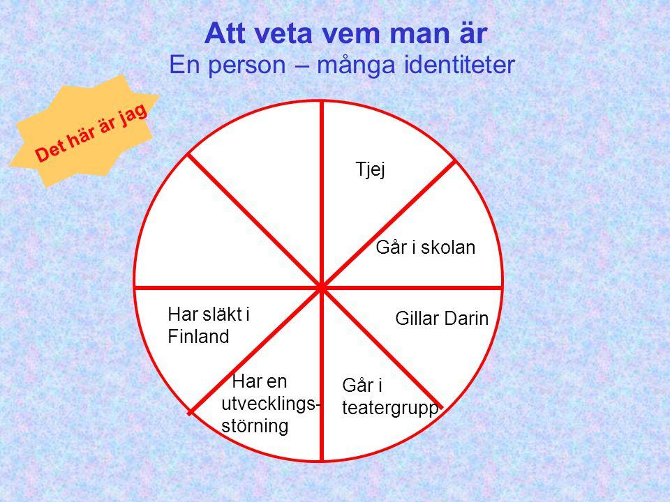 Att veta vem man är Tjej Går i skolan Gillar Darin Går i teatergrupp Har en utvecklings- störning Har släkt i Finland Det här är jag En person – många