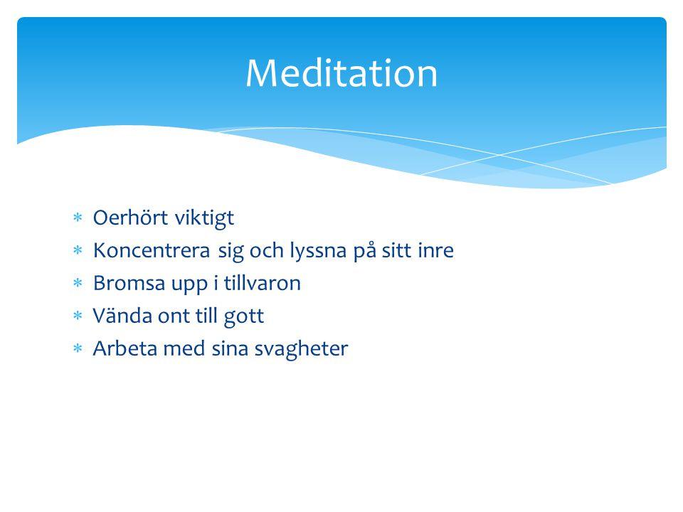  Oerhört viktigt  Koncentrera sig och lyssna på sitt inre  Bromsa upp i tillvaron  Vända ont till gott  Arbeta med sina svagheter Meditation