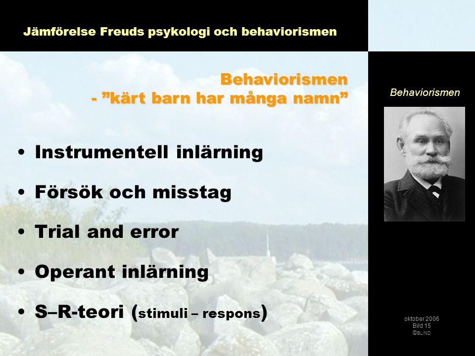 """•Instrumentell inlärning •Försök och misstag •Trial and error •Operant inlärning •S–R-teori ( stimuli – respons ) Behaviorismen - """"kärt barn har många"""
