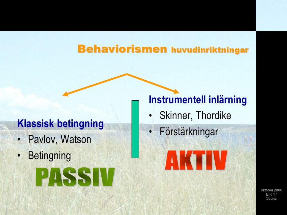 Klassisk betingning •Pavlov, Watson •Betingning Instrumentell inlärning •Skinner, Thordike •Förstärkningar oktober 2006 Bild 17 © BLIND Behaviorismen