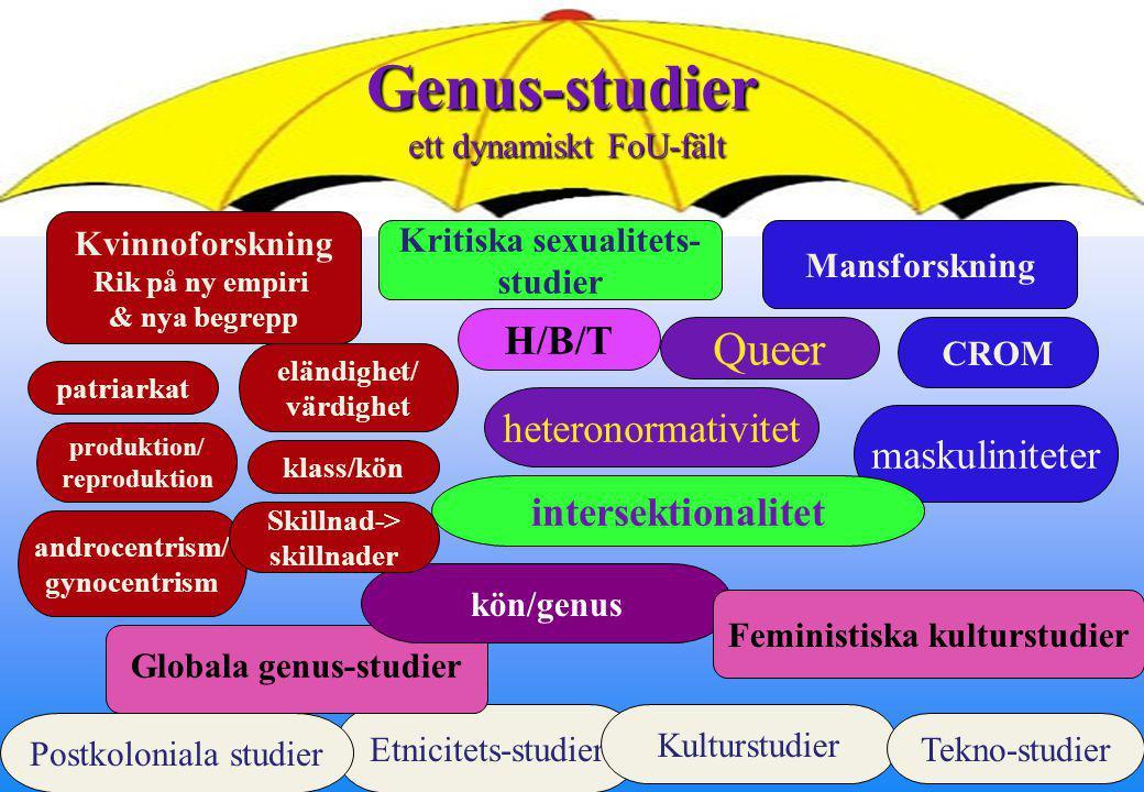 7 Intersektionalitet Olika dominansordningar interagerar på flera nivåer –Strukturellt –Politiskt –Representationellt Kimberlé Crenshaw