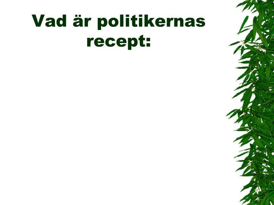 Vad är politikernas recept: