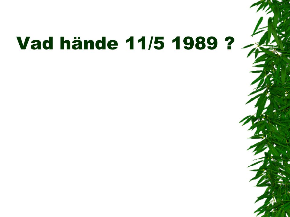 Vad hände 11/5 1989 ?