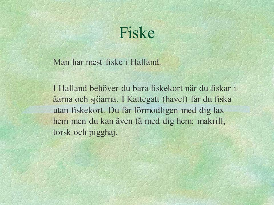 Fiske Man har mest fiske i Halland. I Halland behöver du bara fiskekort när du fiskar i åarna och sjöarna. I Kattegatt (havet) får du fiska utan fiske