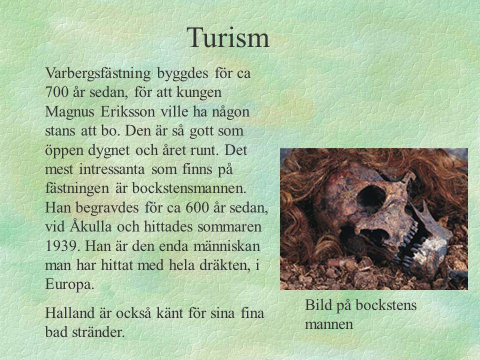 Bild på bockstens mannen Turism Varbergsfästning byggdes för ca 700 år sedan, för att kungen Magnus Eriksson ville ha någon stans att bo. Den är så go