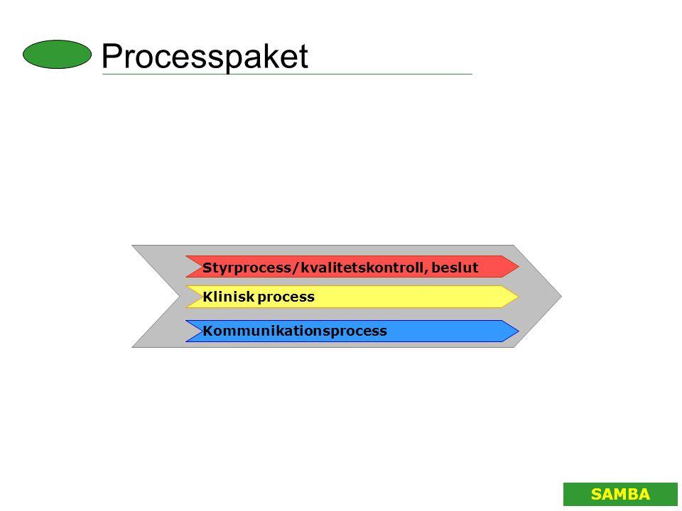 Kommunikationsprocess Styrprocess/kvalitetskontroll, beslut Klinisk process SAMBA Processpaket