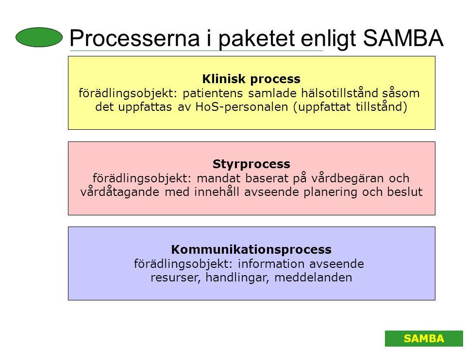 Processerna i paketet enligt SAMBA Klinisk process förädlingsobjekt: patientens samlade hälsotillstånd såsom det uppfattas av HoS-personalen (uppfatta