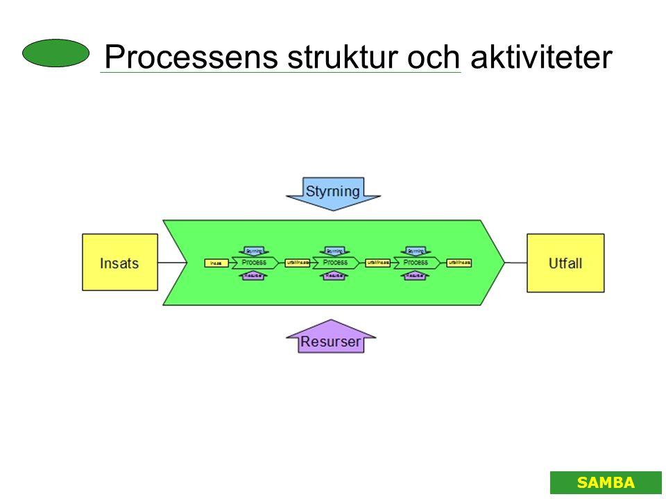 Processens struktur och aktiviteter SAMBA