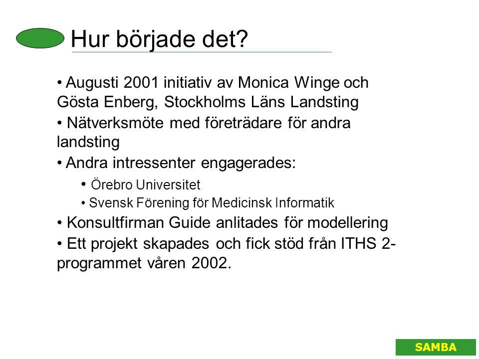 Hur började det? SAMBA • Augusti 2001 initiativ av Monica Winge och Gösta Enberg, Stockholms Läns Landsting • Nätverksmöte med företrädare för andra l
