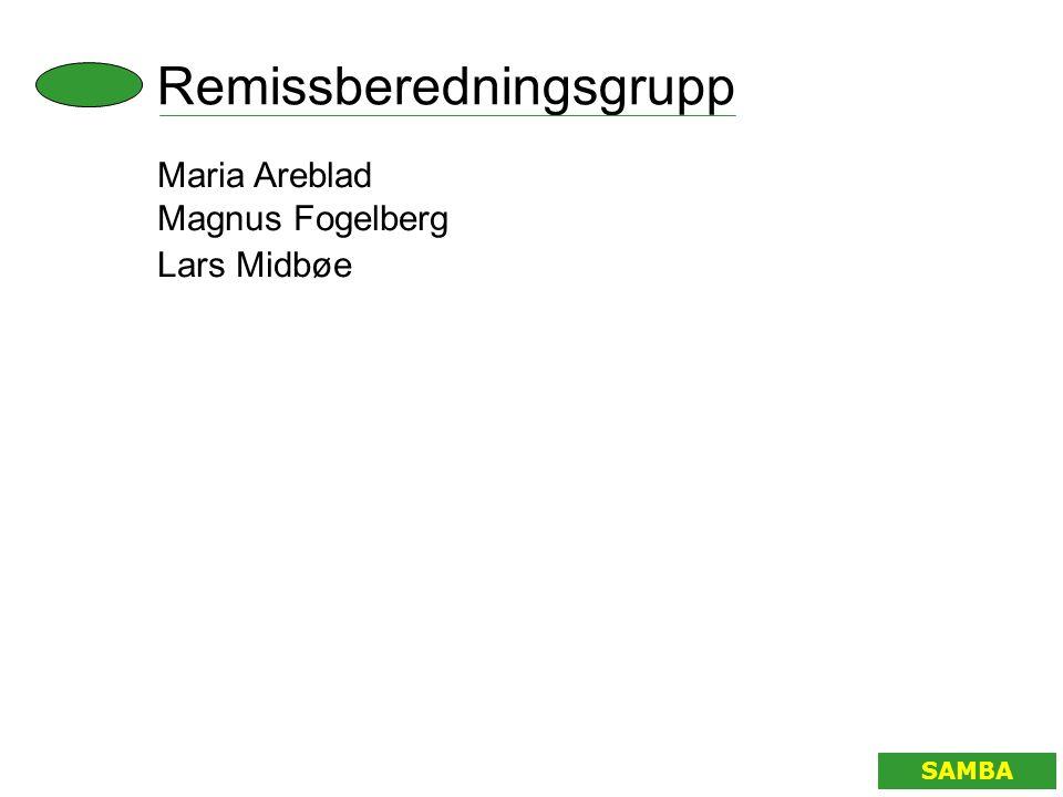 Arbetsform SAMBA • Projektmöten • Möten med beredningsgruppen • Internetforum • Preliminär rapport augusti 2003 • Remissbehandling till februari 2004 • Slutrapport november 2004