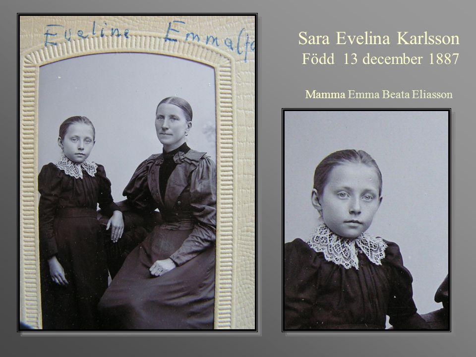 Agnes Viktoria Karlsson Född 1890-02-19 Arbetade i hela sitt liv som lågavlönad piga hos sin lillebror Johan på gården på Ramsvik.
