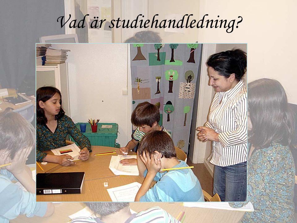 Vad är studiehandledning?