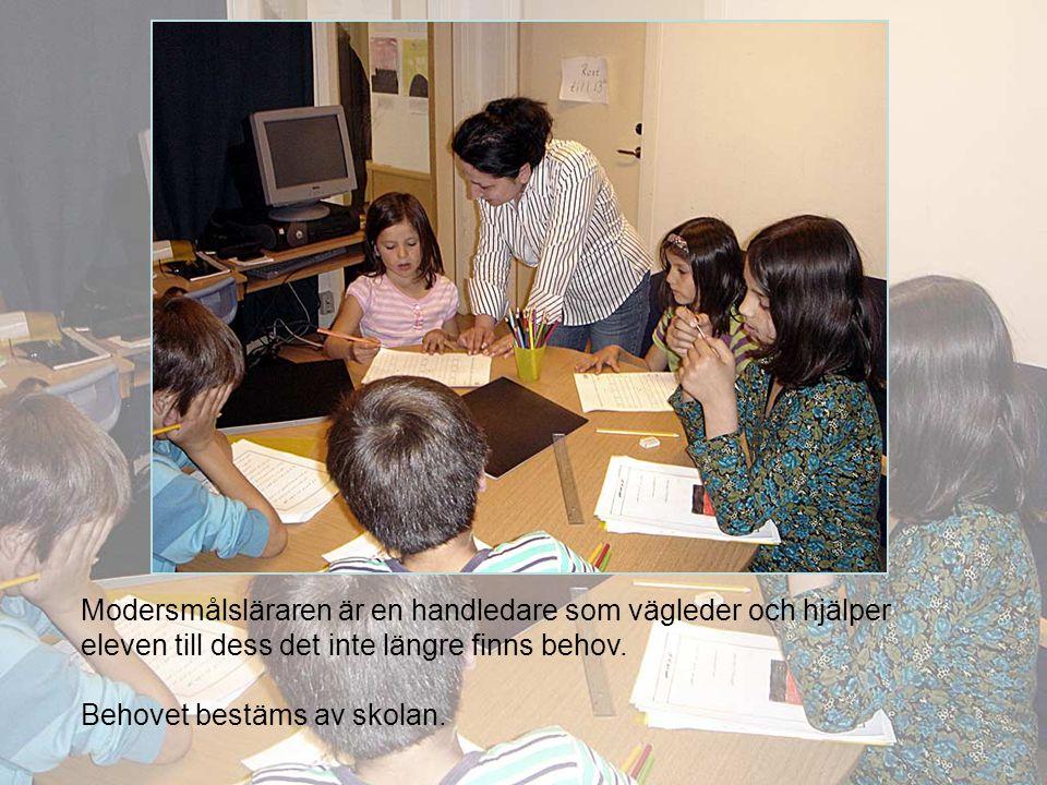 Modersmålsläraren är en handledare som vägleder och hjälper eleven till dess det inte längre finns behov. Behovet bestäms av skolan.