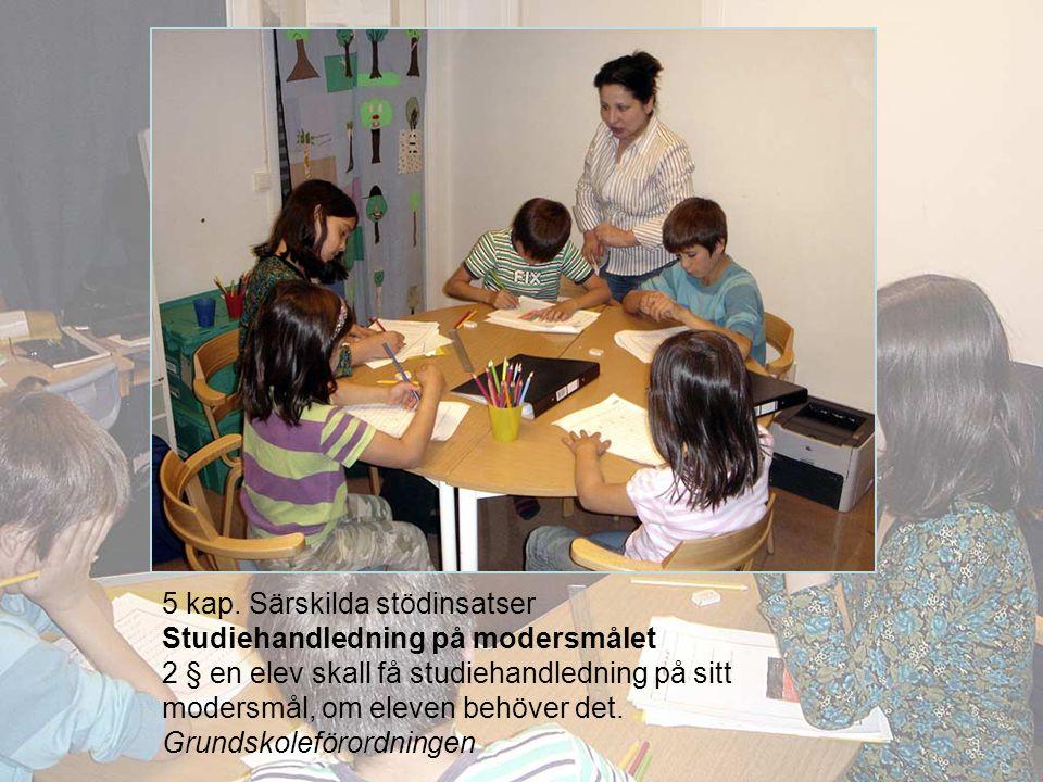5 kap. Särskilda stödinsatser Studiehandledning på modersmålet 2 § en elev skall få studiehandledning på sitt modersmål, om eleven behöver det. Grunds