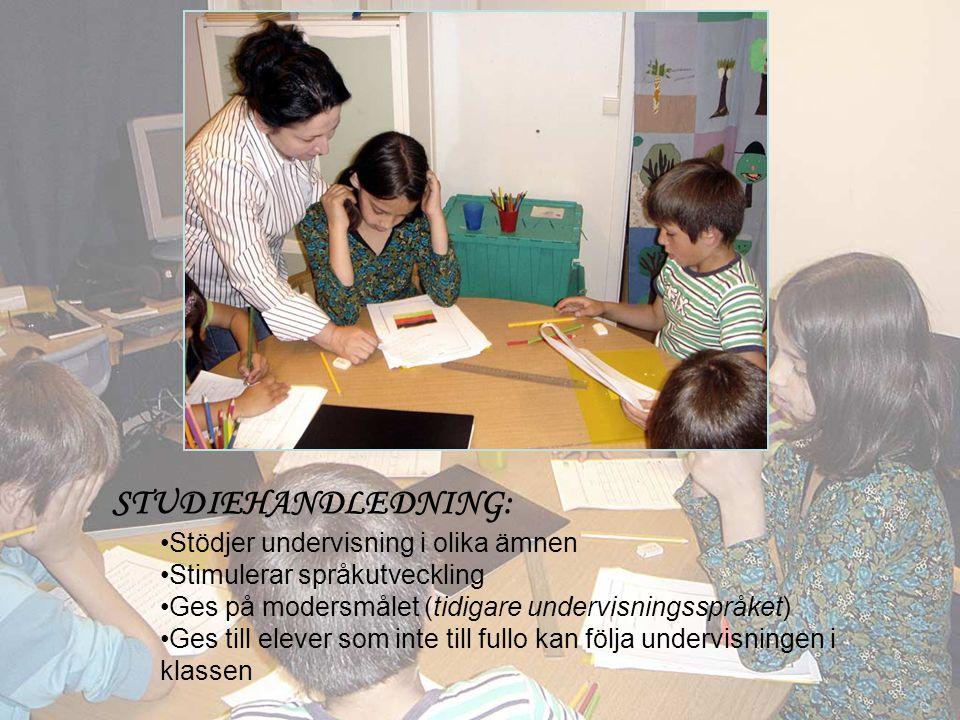STUDIEHANDLEDNING: •Stödjer undervisning i olika ämnen •Stimulerar språkutveckling •Ges på modersmålet (tidigare undervisningsspråket) •Ges till elever som inte till fullo kan följa undervisningen i klassen