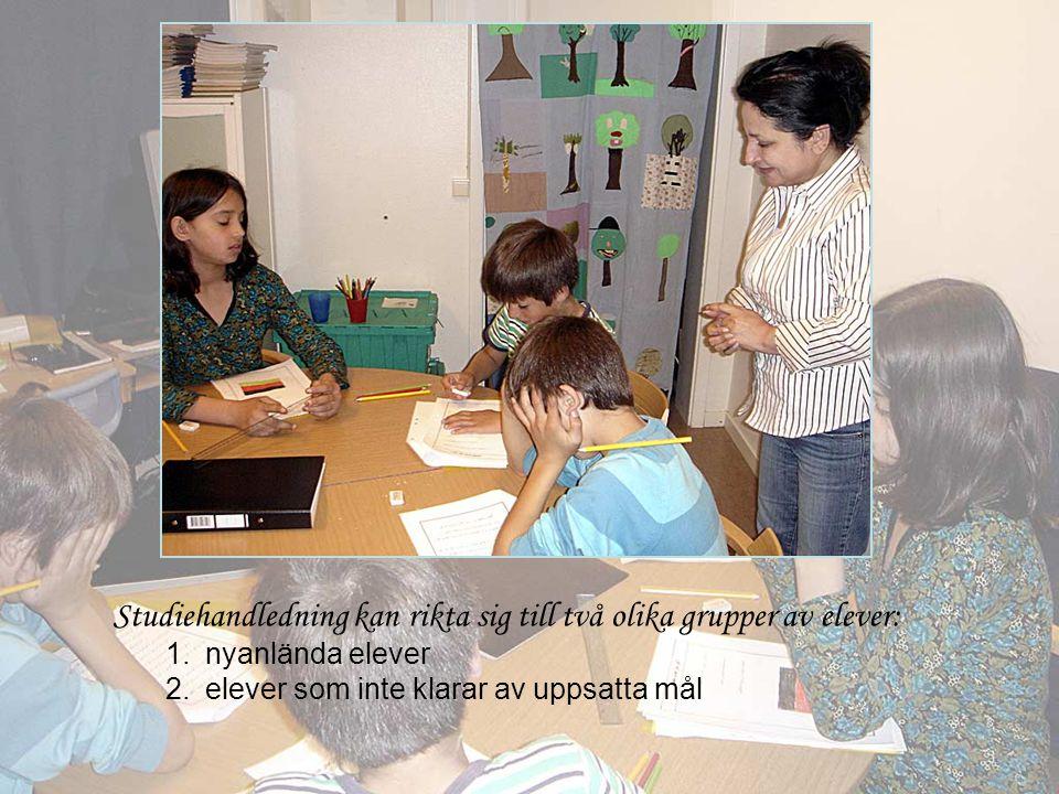 Studiehandledning kan rikta sig till två olika grupper av elever: 1.nyanlända elever 2.elever som inte klarar av uppsatta mål
