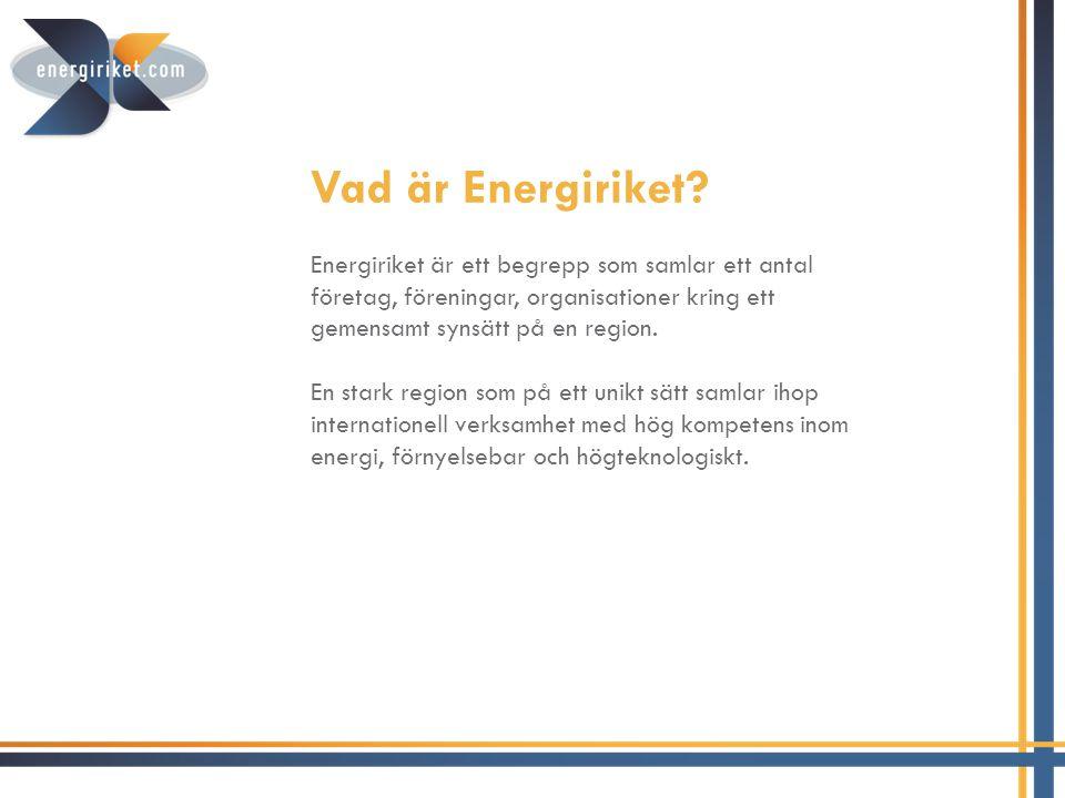 Vision Energiriket skall 2015 vara etablerat i Sverige och känt för kompetens, produktion och nätverkande inom energi- och miljöteknik