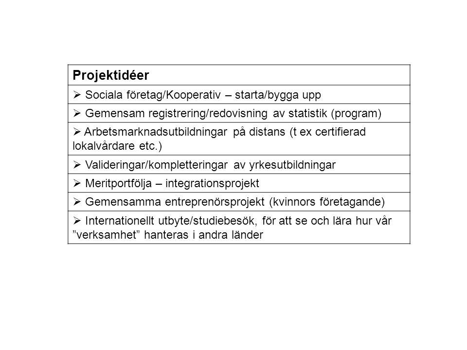 Projektidéer  Sociala företag/Kooperativ – starta/bygga upp  Gemensam registrering/redovisning av statistik (program)  Arbetsmarknadsutbildningar p