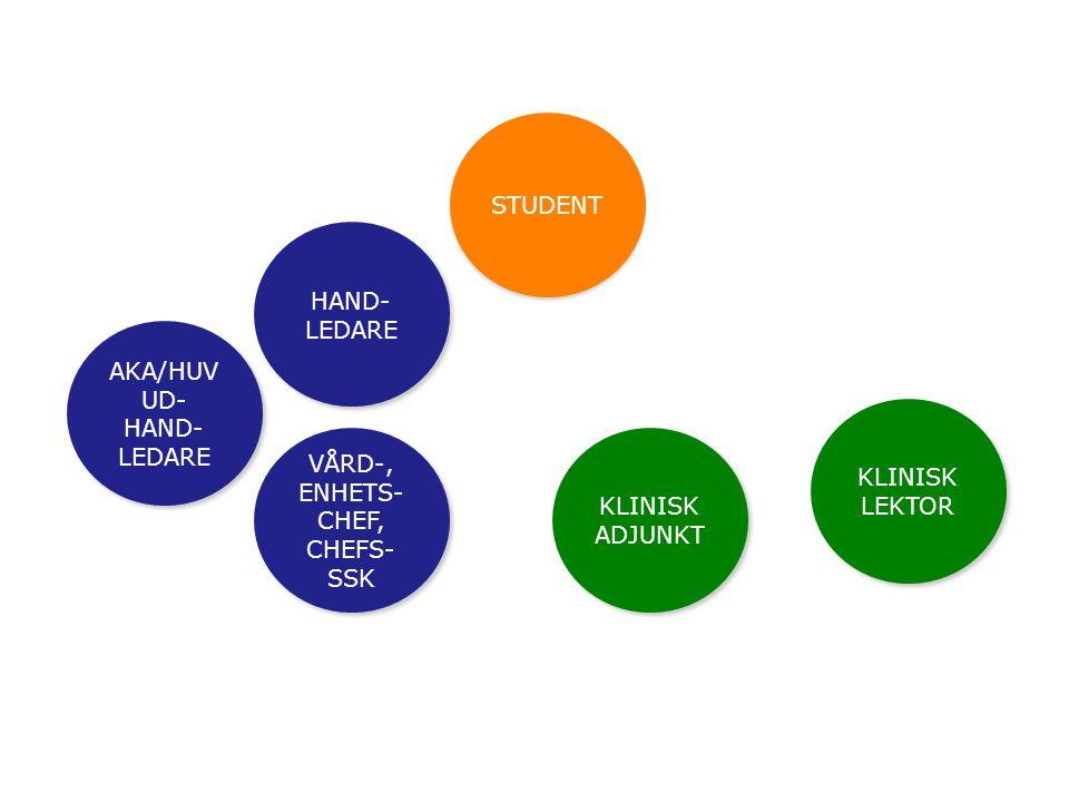 STUDENT AKA/HUV UD- HAND- LEDARE HAND- LEDARE VÅRD-, ENHETS- CHEF, CHEFS- SSK KLINISK LEKTOR KLINISK ADJUNKT