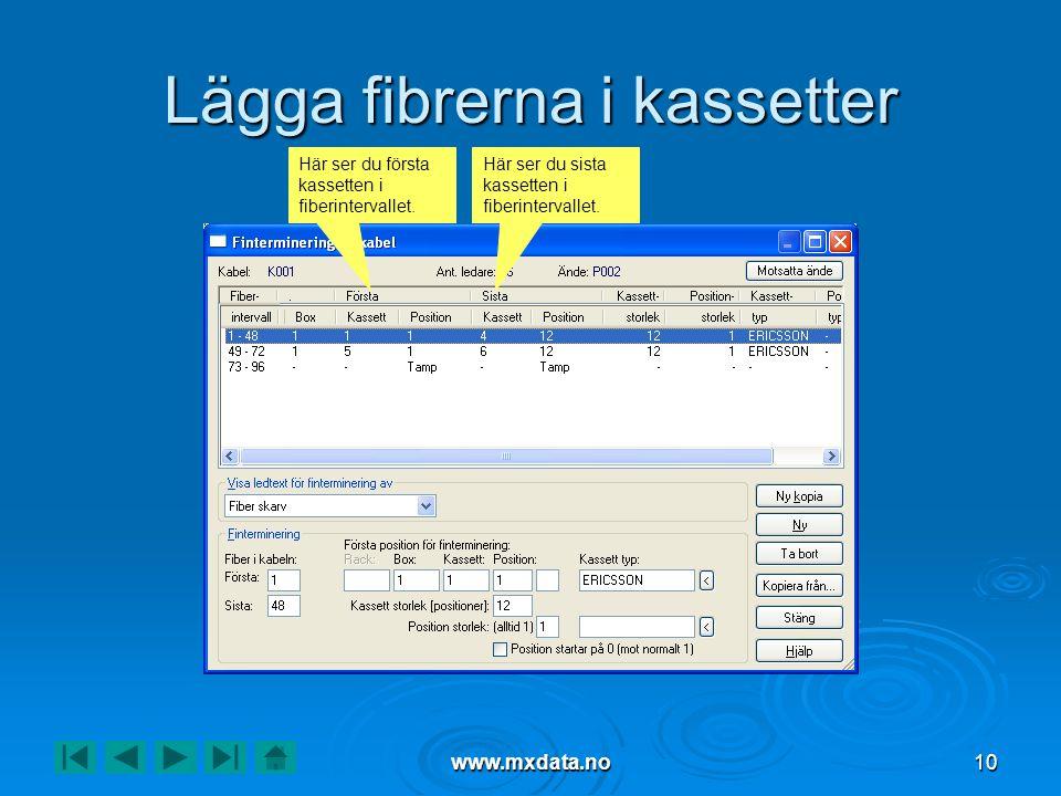 www.mxdata.no10 Lägga fibrerna i kassetter Här ser du första kassetten i fiberintervallet. Här ser du sista kassetten i fiberintervallet.