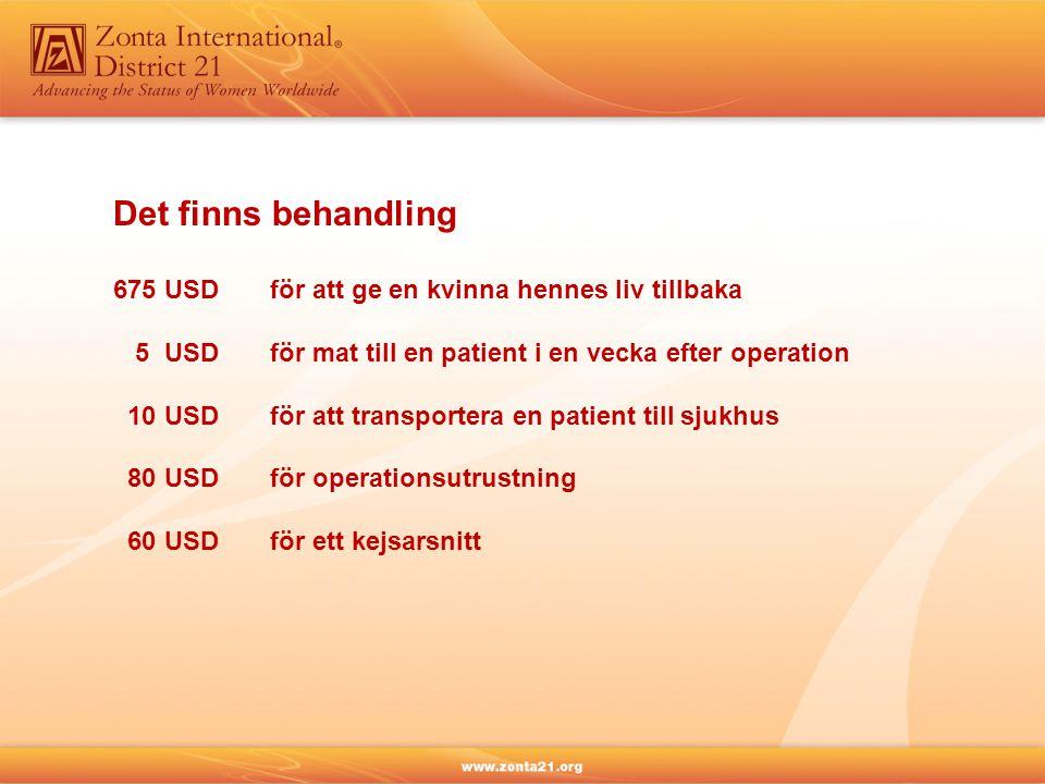 Det finns behandling 675 USD för att ge en kvinna hennes liv tillbaka 5 USDför mat till en patient i en vecka efter operation 10 USDför att transportera en patient till sjukhus 80 USDför operationsutrustning 60 USDför ett kejsarsnitt